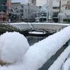 今年の徳島でも雪が降りました(2018年1月11日)