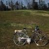 スズキ インパルス SL-FB /フラッシャー 自転車