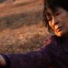 ネタバレ解説『母なる証明』知的障害じゃない!?農薬や石の意味をトジュンから考察!ストーリーあらすじ