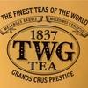 TWGとの出会いと紅茶の話。