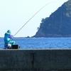 家族で朝釣り&小魚の唐揚げ祭り!