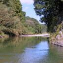 高麗川清流