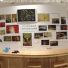 「インコのおとちゃん」村東 剛 写真展 あべの 3月1日から始まってます!!