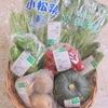 宅配便「ゆうきの実」/ ある日の有機野菜セット