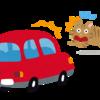 ケアマネが考える高齢者の交通事故を減らすための原因と対策【体験】