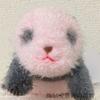 パンダの赤ちゃんぬいぐるみ!上野動物園シャンシャングッズ2