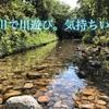 今日のよかった第28回〜川遊び〜