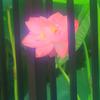 花蓮⑧ 囚われのお姫さま(笑)