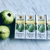 【ドイカムのフルーツジュース】果汁98%!グアヴァジュース@タイ