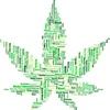カナダ ついに大麻合法化へ