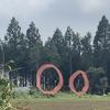 【千葉の森林を守る】皆伐か間伐か。そういえば、千葉県に5万頭生息するキョン問題もあったな。