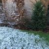 初雪のジュネーブ