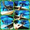 亀のゴン太🐢観察日記③