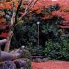 名古屋、京都、大阪の旅②