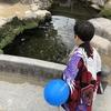 七五三のお祝いは太宰府天満宮がお勧め!昭和感満載の遊園地が敷地内にあるよ!
