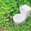 トイレ掃除がめんどくさい!それなら緑の魔女をシュシュのシュ。