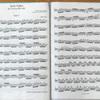 ついに憧れのバッハの無伴奏組曲第1番~プレリュードへ!