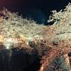 桜が散る季節の考え事