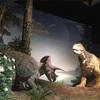1歳の息子を連れて茨城県自然博物館に行ってきました