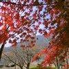 三上山からの眺望と近江富士花緑公園