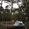 ツリーフロアにテント張ってみました!!