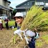 収穫の秋!~5年:稲刈り編~他