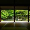 京都・洛北 - 新緑まぶしい蓮華寺の初夏