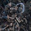 ウォーキング・デッド シーズン8 第4話 バレあり感想 まるまる全部エゼキエル回