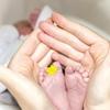 爺と婆と独身女の生活に新生児がやってきた!独身女と定年父とパート母と新米ママの子育て奮闘記。