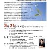 """(一社)東京精神保健福祉士協会 主催「今、私たちができる""""権利擁護""""とは ~旧優生保護法への国家賠償を通し権利の尊重を考える~」に参加して"""
