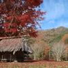 富士河口湖紅葉まつり その2 実は穴場があった話 2018.11.11