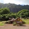 2019年 ハワイ旅行記 vol.4 クアロアランチで恐竜時代にタイムトラベル