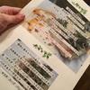 Brunoaブルノア 島の野菜の洋風創作料理【名瀬】