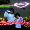 """<UP>広島市植物公園""""花と光のページェント""""に行ったよ!"""