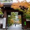 永観堂の秋、紅葉がある光景2017。