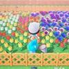 【あつ森攻略日記・うさぎ島編#4】フランソワさんとクリスチーヌさんの引っ越し場所確保の為に花壇を綺麗に整地します!リリアンさんは引っ越し完了♪