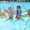 【体験レポ】夏休み平日のレインボープール、子連れで遊んできました!