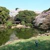 東京国立博物館『春の庭園開放』