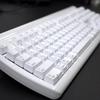 Mac用日本語メカニカルキーボードを使ってみた [Matias FK302-JP]