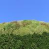 京都・八瀬の新緑はカラフル