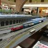 テラノレグラスで鉄道模型の店・ポポンデッタ (イオンモール高崎店)へ!~子供の頃に買ってもらった鉄道模型を30年ぶりに走らせてみた~