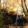 【春と秋のみ開放の秘密の渓谷】熊本阿蘇南小国町の『マゼノ渓谷』の紅葉と大自然を楽しんできました♬【希少な紅葉スポット】