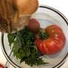 大きなトマトを収穫!庭の夏野菜畑