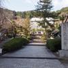 奈良の人気スポット「長谷寺」は桜、牡丹、紫陽花、紅葉の名所