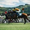【クイズ対策】競馬にまつわるエトセトラ 無敗の三冠馬、無敗の二冠馬って何?そもそも「中央競馬」「GIレース」とは?