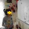 ☆堺アートケーション見学&大阪歴史博物館☆