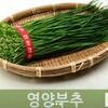 韓国の食材③「ひめらっきょうの葉(영양부추)ヨンヤンプチュ」