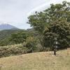 5/6に、愛鷹山へ登りました。