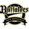 Salaries of NPB ORIX Buffaloes Players in 2021
