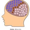 MacBook環境と利用者の脳についてちょっとさらしてみる
